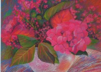Ružové hortenzie